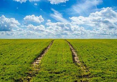 土壤养分检测仪在农业施肥中的应用